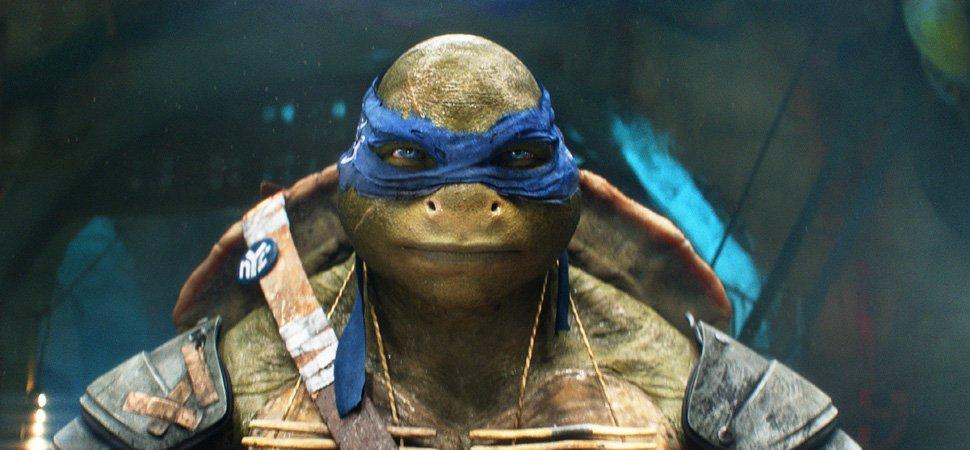 Leadership Lessons From The Teenage Mutant Ninja Turtles Inccom