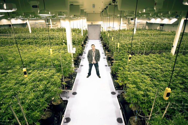 oregon weed grow operation business plan