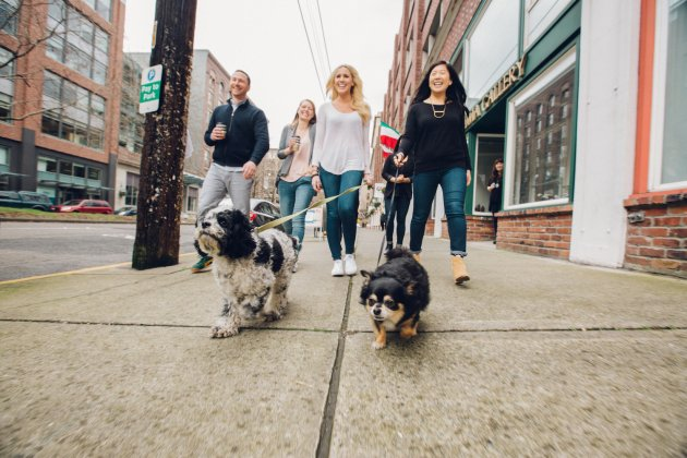 These companies provide generous benefits for their employees employees take their dogs out for a walk outside realselfs seattle officeedit courtesy realself malvernweather Images