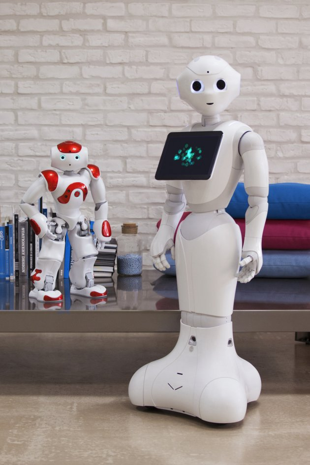 Meet the Robot Coming to Businesses and Homes This Year | Inc.com
